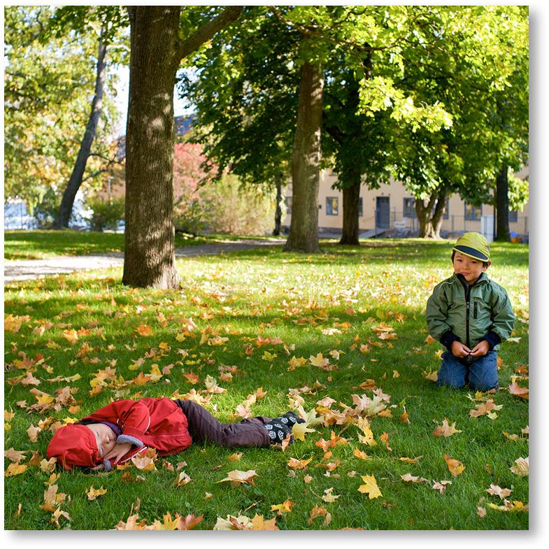 """""""落ち葉の中で眠る娘と、それを見守る兄"""""""