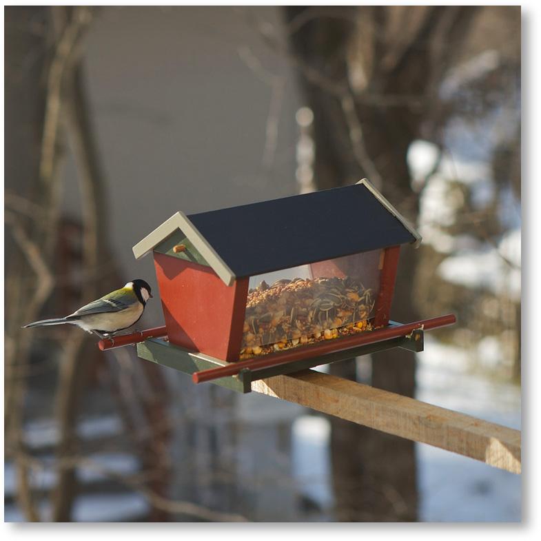 鳥の餌台 バードフィーダー