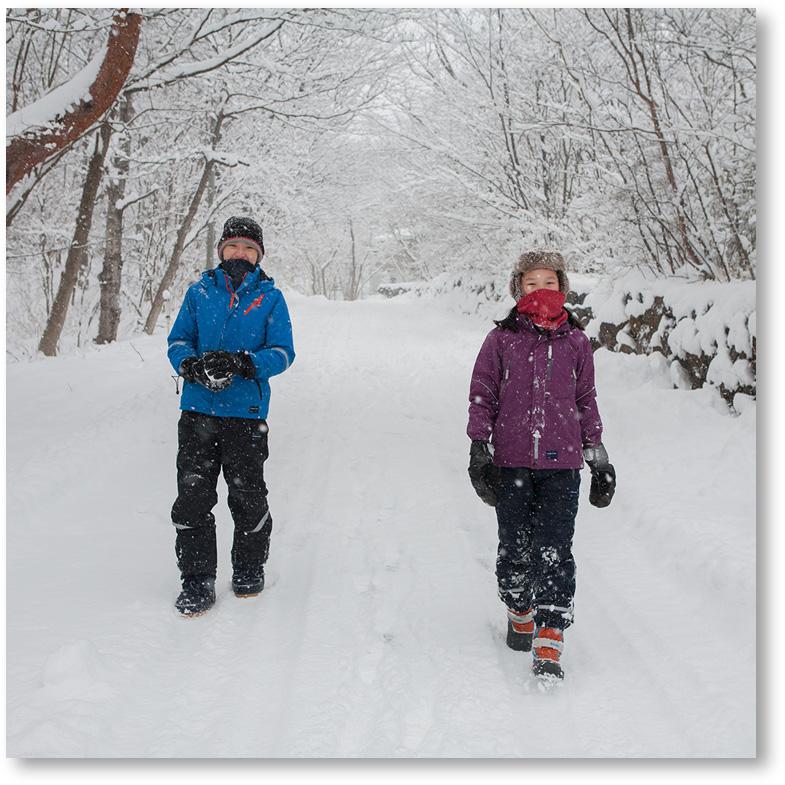 """""""雪で覆われた道を散歩"""""""