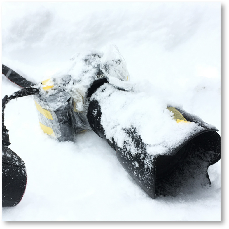 雪の中でEOS 5D