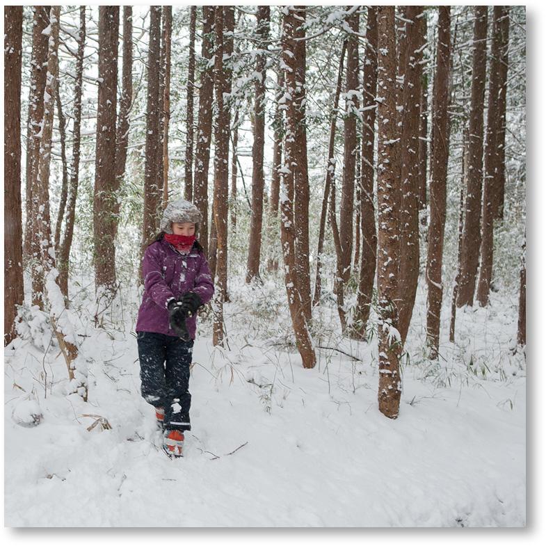 雪に覆われた中で遊ぶ