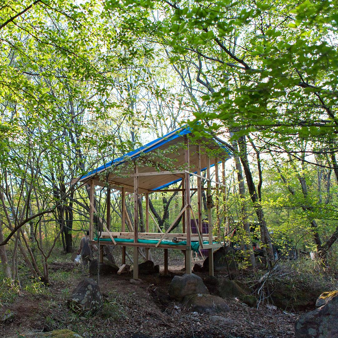 那須の新緑の中に小屋を作る