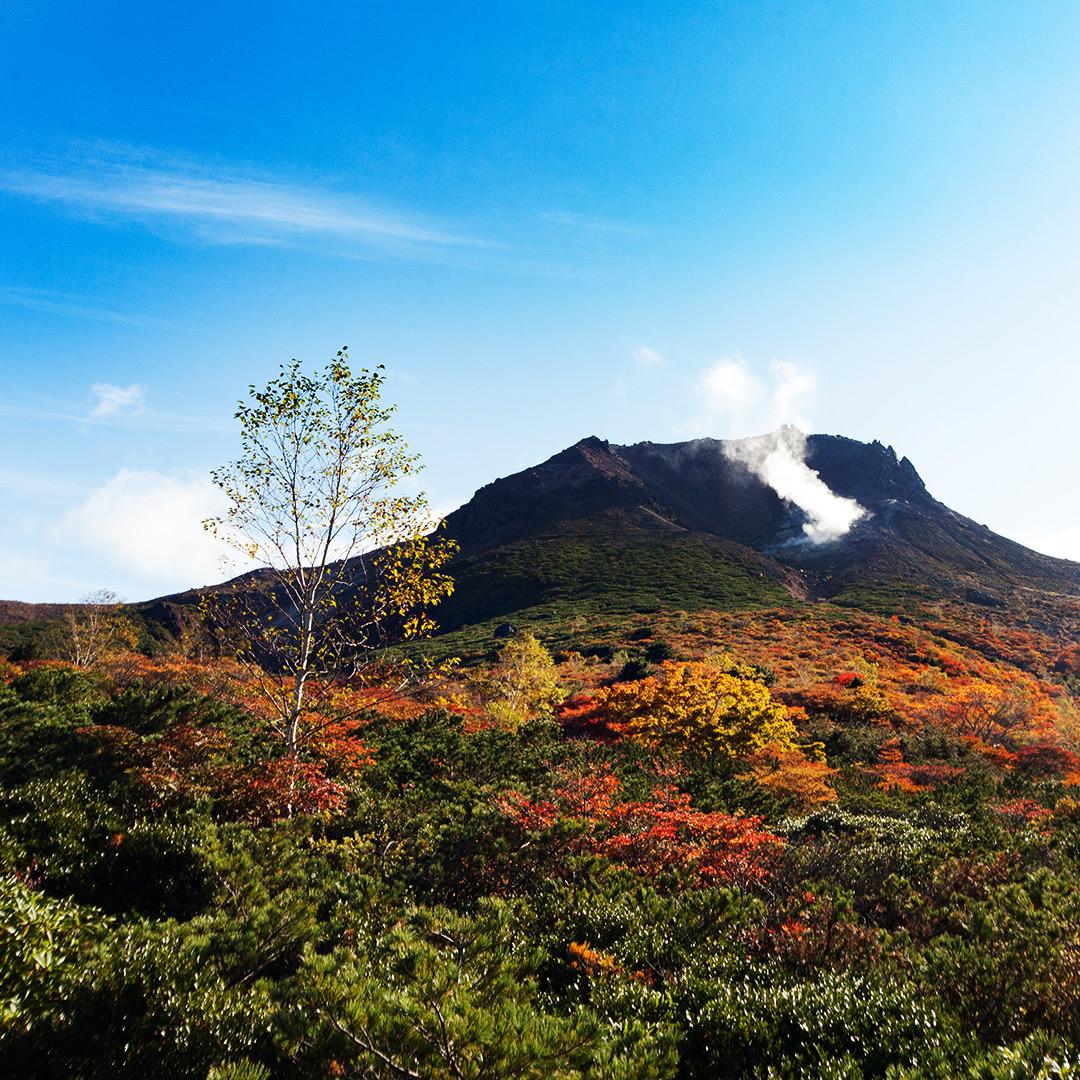 紅葉の茶臼岳を望む
